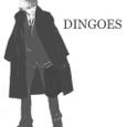 Dingoes